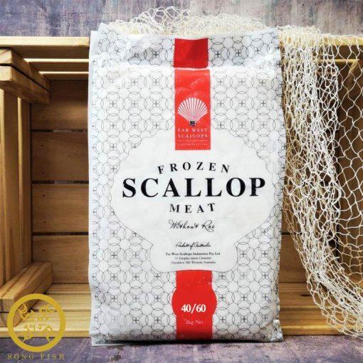 Australian Scallops 40/60